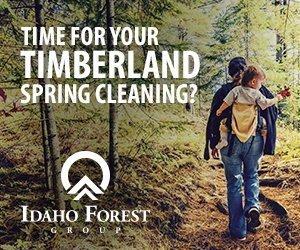 logging, selling logs, selling timber, companies that buy treews